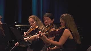 Eine Kleine Nachtmusik W.A. Mozart: III. Menuetto: Allegretto