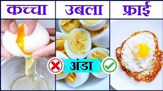 अंडा कच्चा , उबला या फ्राई कर के खाना चाहिए | Anda khane ka sahi tarika