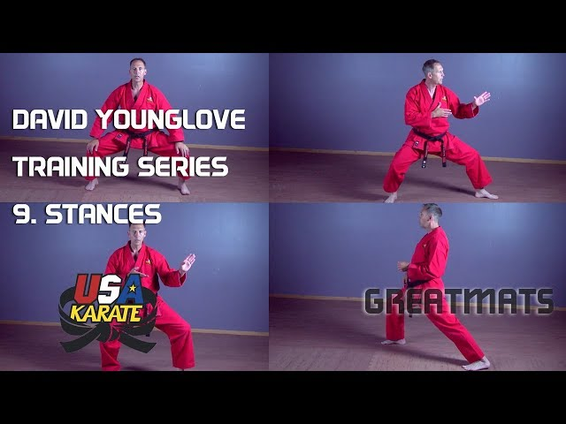 How to Do Basic Karate Stances - Front, Back, Horse & Cat