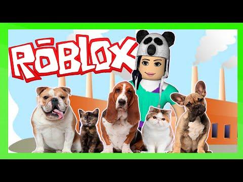 Jogo Roblox – FÁBRICA DE PETS (Pet Tycoon) Online Gratis