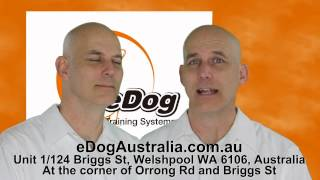Edog Australia- Dog Training Collar, Remote Training Collar, Bark Control