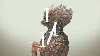 164 - 無花果