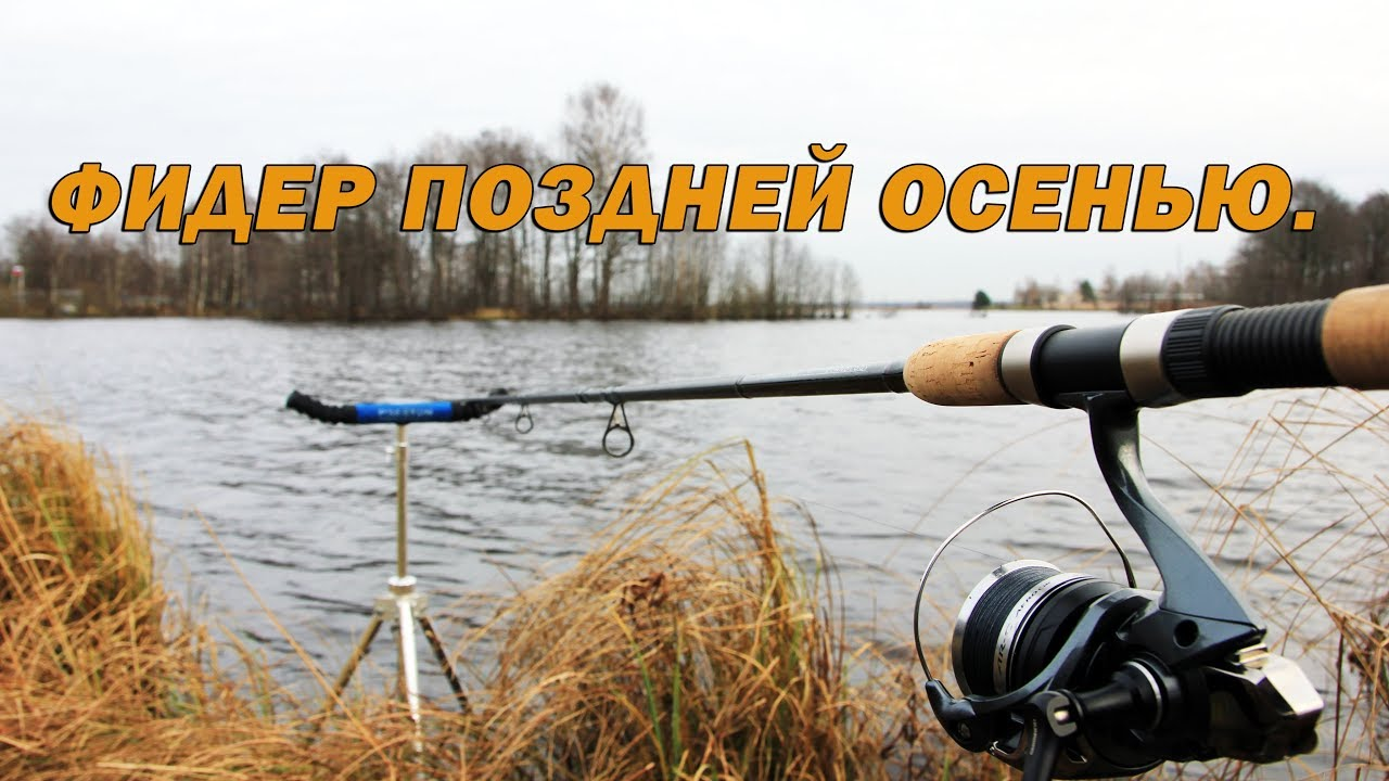 ловля осенью на удочку видео