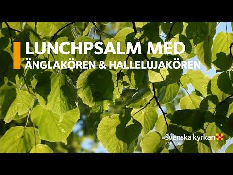 Lunchpsalm