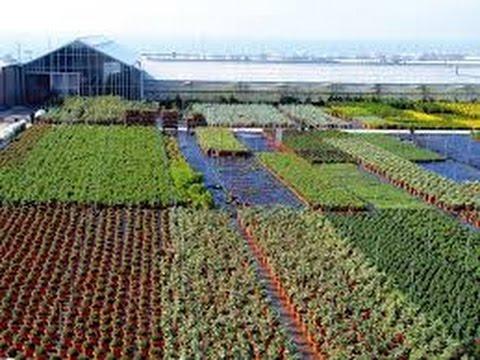 Resultado de imagen para agro tecnificado productivo