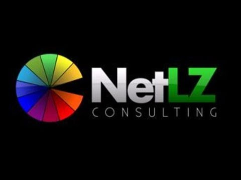 About NetLZ Consulting - SEO Firm in NJ