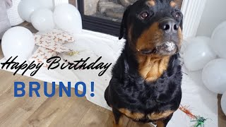 Bruno's turns 3 years old! Birthday boy |61