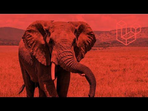 Vídeo no Youtube: Laravel Mastery -  Uma Excelente Oportunidade #laravel #php