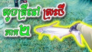 Pond Fishing At Sras Bey Part 2 (ស្ទូចត្រីនៅស្រះបី ភាគ២) | Fishing Vlog S2 #20