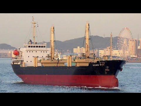 DONG PHU - DONG DO MARINE DEVELOPMENT general cargo ship