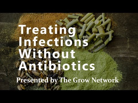 Treating Infections Without Antibiotics