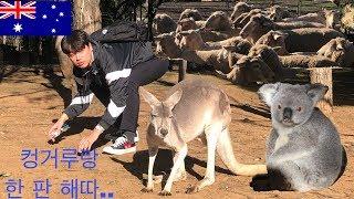 호주 시드니 가족여행 …