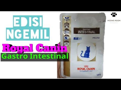 royal-canin-gastro-intestinal