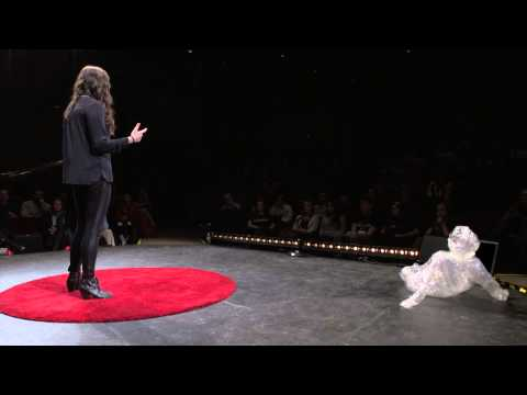 Mind, Body & Soul: Mental Wellness Centers | Jamie Mangiameli | TEDxNorthCentralCollege