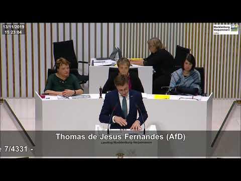 """Thomas de Jesus Fernandes: AWO-Untersuchungsausschuss: """"Ich sehe keinen Aufklärungswillen!"""""""