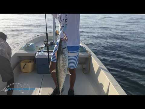Offshore Casting & Slow Jigging Trips