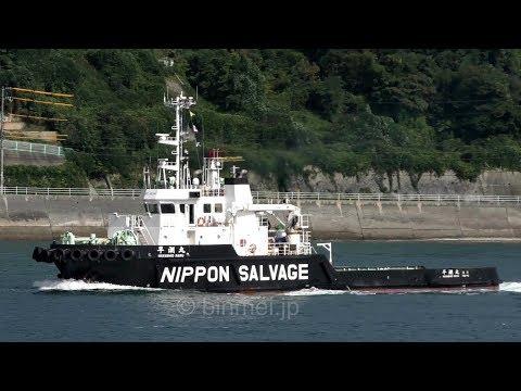 日本サルヴェージ 早潮丸 / HAYASHIO MARU - Nippon Salvage tugboat - 2017
