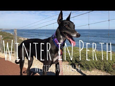 Winter In Perth