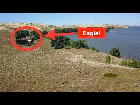 Big Bird at the Curonian Spit, Lithuania - DJI Mavic Pro 4k