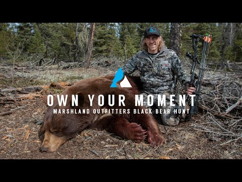 WORLD CLASS Black Bear Hunt In Saskatchewan