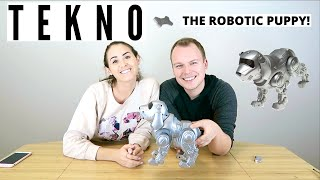 TESTING THE ORIGINAL TEKNO THE ROBOTIC PUPPY!