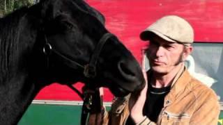 騎馬劇団ジンガロ バルタバスからのメッセージ