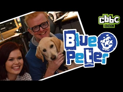 Blue Peter Puppy on Chris Evans BBC Radio 2 Show