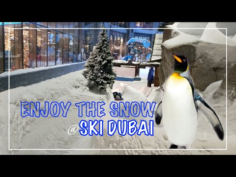 SKI DUBAI | ENJOY THE SNOW IN THE DESSERT | ShowUP TV101