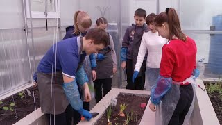 На уникальной фито-ферме ученики спецшколы Тамбова своими руками выращивают цветы и овощи