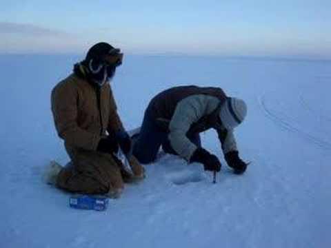 Snow sampling on sea ice in Barrow, AK