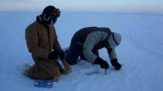 Snow sampling on sea ice in Barrow, AK