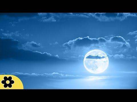 Relaxing Sleep Music, Calm Music, Soft Music,  Instrumental Music, Sleep Meditation, 8 Hours, �C