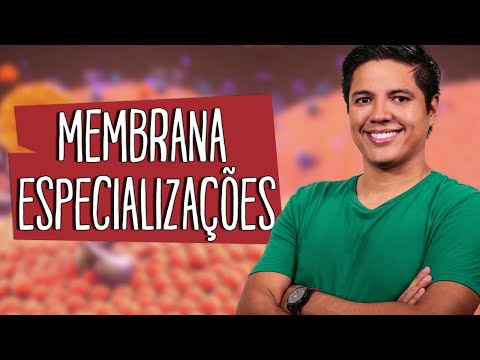 especializaÇÕes-da-membrana-plasmÁtica---citologia---prof.-kennedy-ramos
