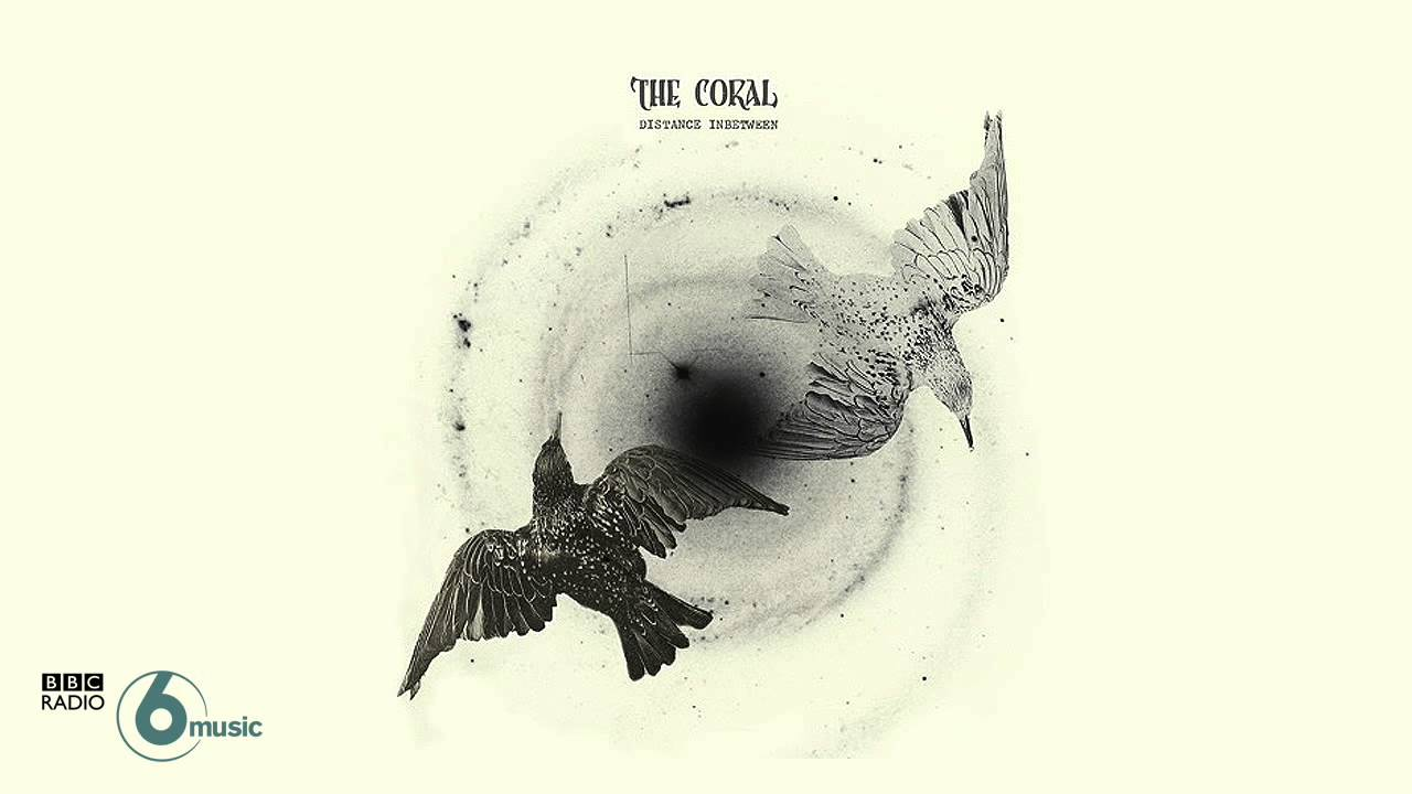 the-coral-its-you-live-session-bbc-radio-6-music-donderjager