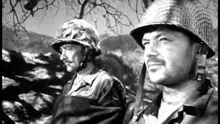 Men in War (1957) - The colonel