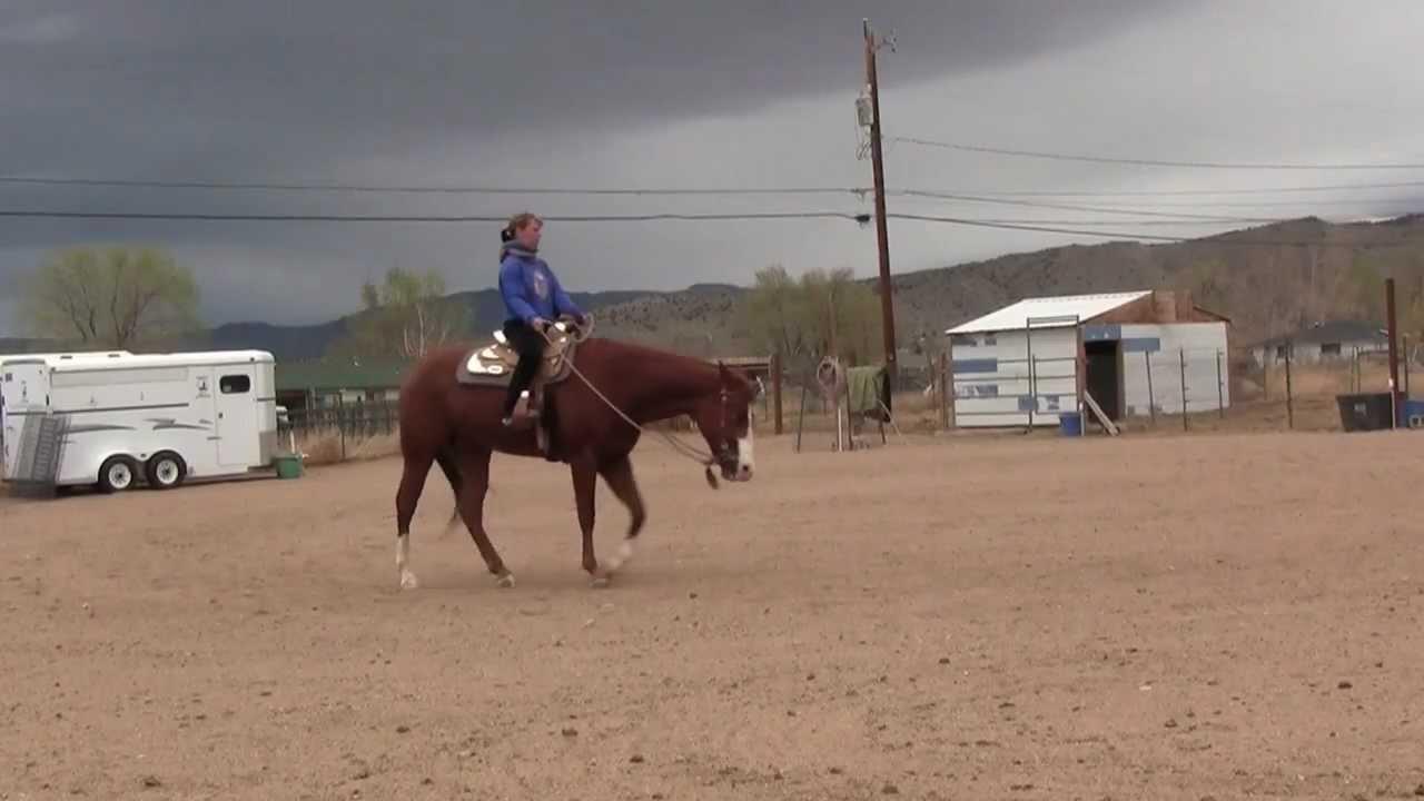 Practicing Western Pleasure Jog & Lope- Clifta Lenee Perez & Romeo April  25, 2012