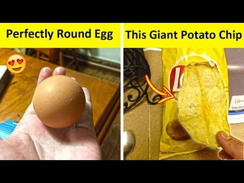 People Who Found The Most Odd Looking Food (NEW PICS!)
