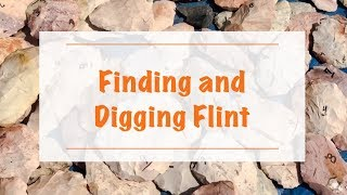 Finding and Digging Flint