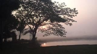 New Bangla Waz - Akherater Alosona (Hereafter) - Maulana Delwar Hossain Sayeedi