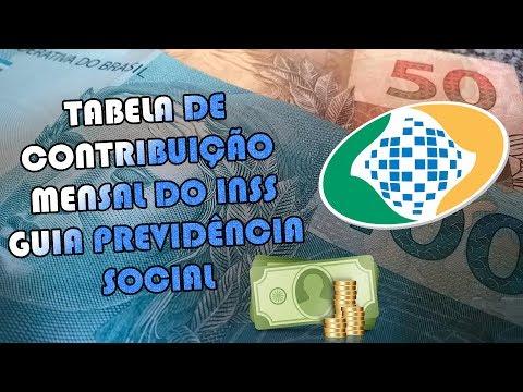 TABELA OFICIAL DE CONTRIBUIÇÃO DO INSS PREVIDÊNCIA 2019 #INSS