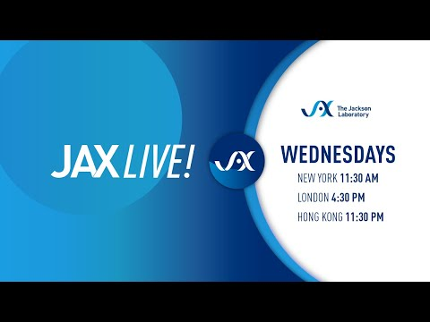 JAX Live! Bispecific Antibody Testing Using PBMC Humanized Mice