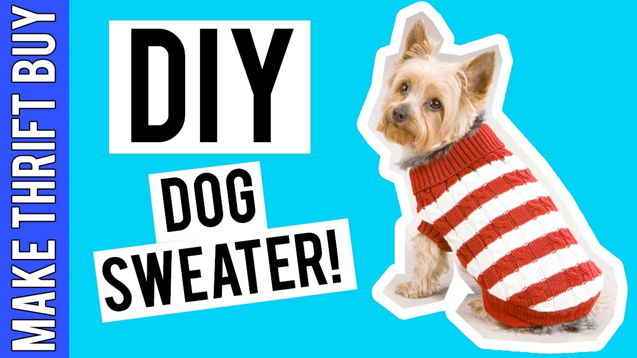 DIY DOG SWEATER! | Make Thrift Buy #41 - YouTube