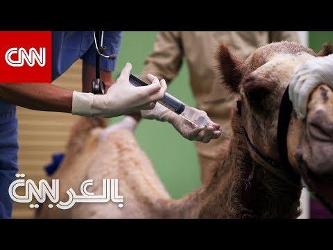 بقيمة 10 ملايين دولار.. نظرة داخل مستشفى دبي للجمال  - نشر قبل 7 ساعة
