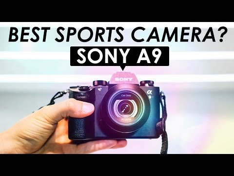 Best mirrorless camera for sports photography 2020