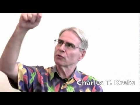 Charles T. Krebs about his work - Energy Kinesiology, iLEAP and multi-sensual integration