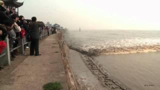 Qiantang River Tide Wave