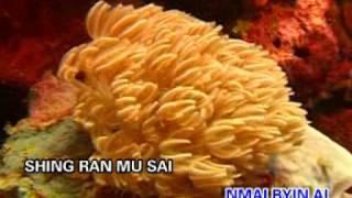 Tsaw Hpe Ni Ngu Sa Na