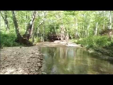 Country Home Acreage Creeks Waterfall For Sale TN