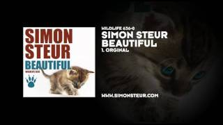 Simon Steur - Beautiful