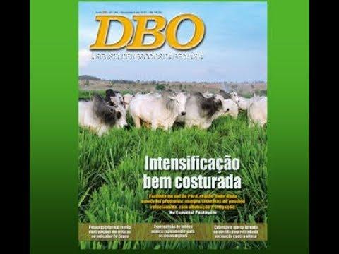 DBO de novembro tem assunto especial: Pastagem!